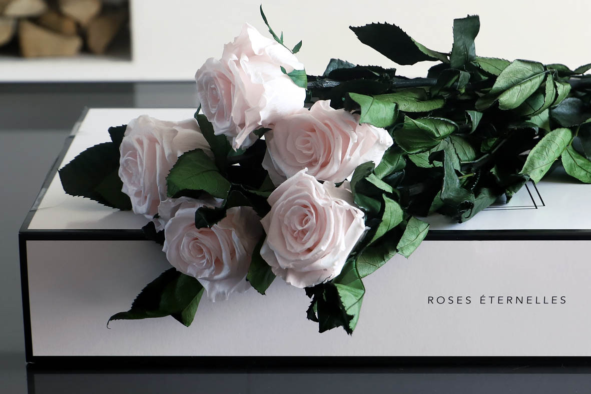 LONG-STEM INFINITY ROSES - SOLD OUT!