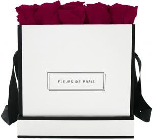 Infinity Collection Velvet Plum Large white - square