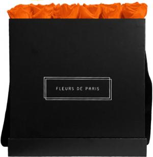 Infinity Collection Orange Flame Luxe black - square