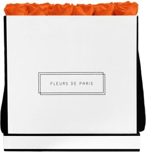 Infinity Collection Orange Flame Luxe white - square
