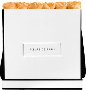 Infinity Collection Perfect Peach Luxe white - square