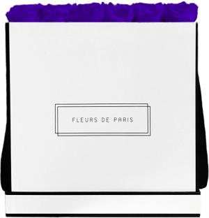 Infinity Collection Violet Vain Luxe white - square