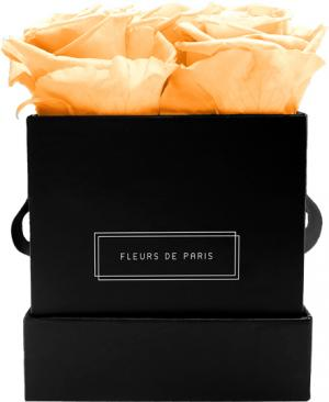 Infinity Collection Perfect Peach Small black - square