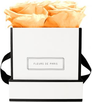 Infinity Collection Perfect Peach Small white - square